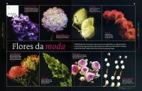 http://www.marisacardoso.com/files/gimgs/th-19_19_flores2.jpg